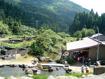 Yokokura1